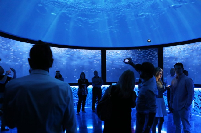 Discover the best aquariums in America including Sea Life with TicketsatWork!