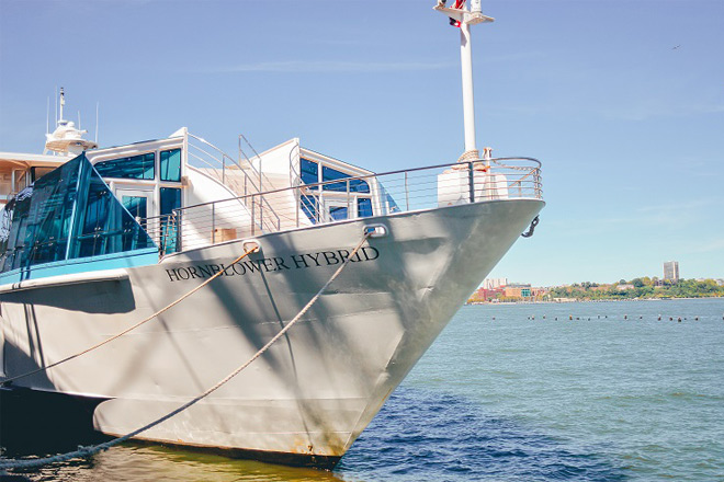 Take to the high seas this thanksgiving with Hornblower Cruises