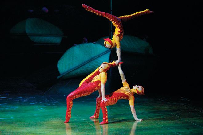 cirque-du-soleil-ovo-taw