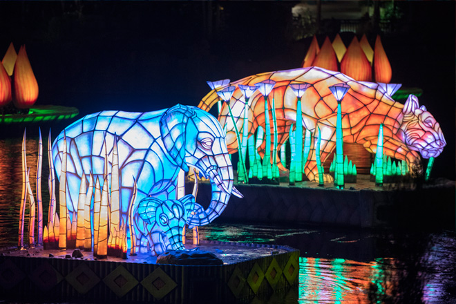 rivers-of-light-animal-kingdom-taw