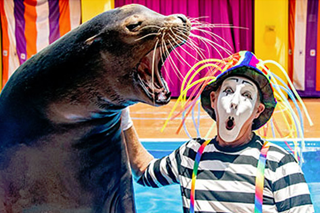 SeaWorld Electric Ocean - TicketsatWork.com